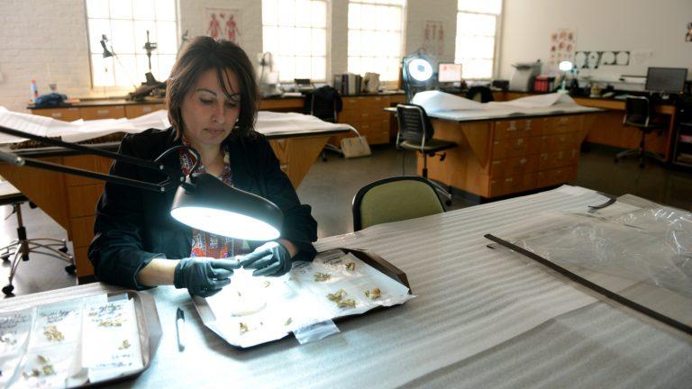 Ann Ross in lab