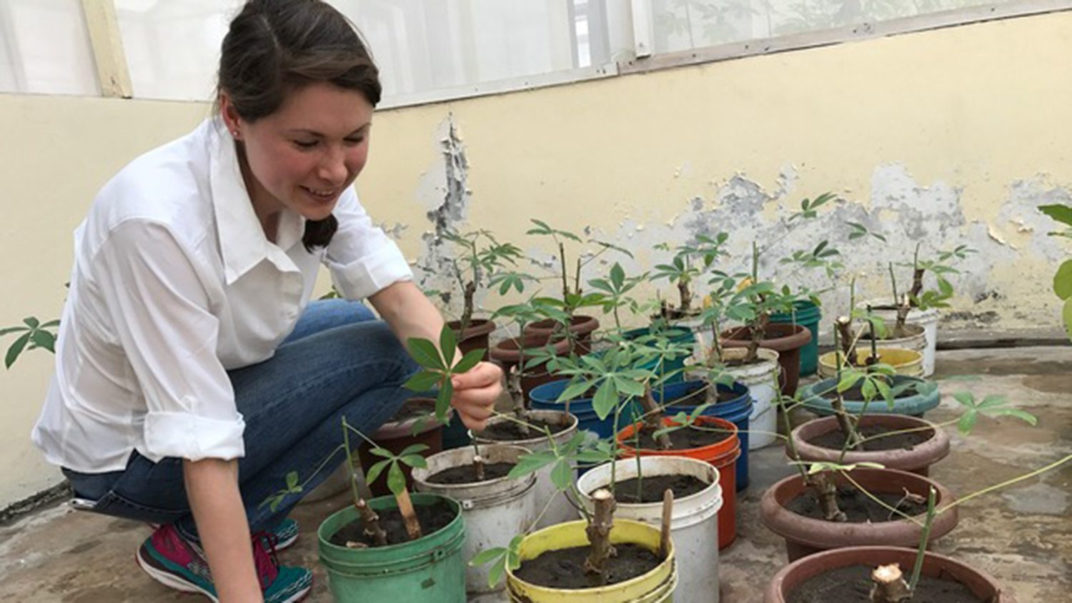 student working in Tanzania on crops